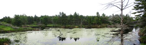 IMG_0058-Panorama