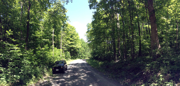 Canoe Lake Road